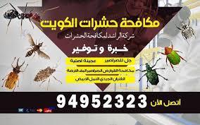 رش المبيدات الحشرية في المنزل